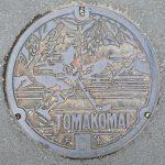 Plaque de la ville de Tomakomai figurant un joueur de hockey