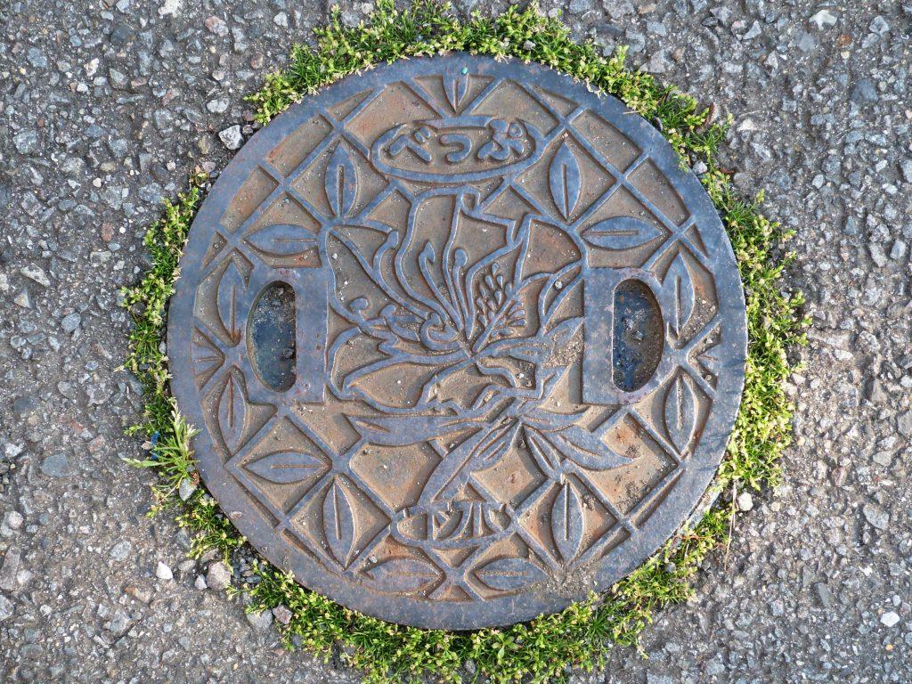 Plaque de Beppu figurant la fleur de la ville