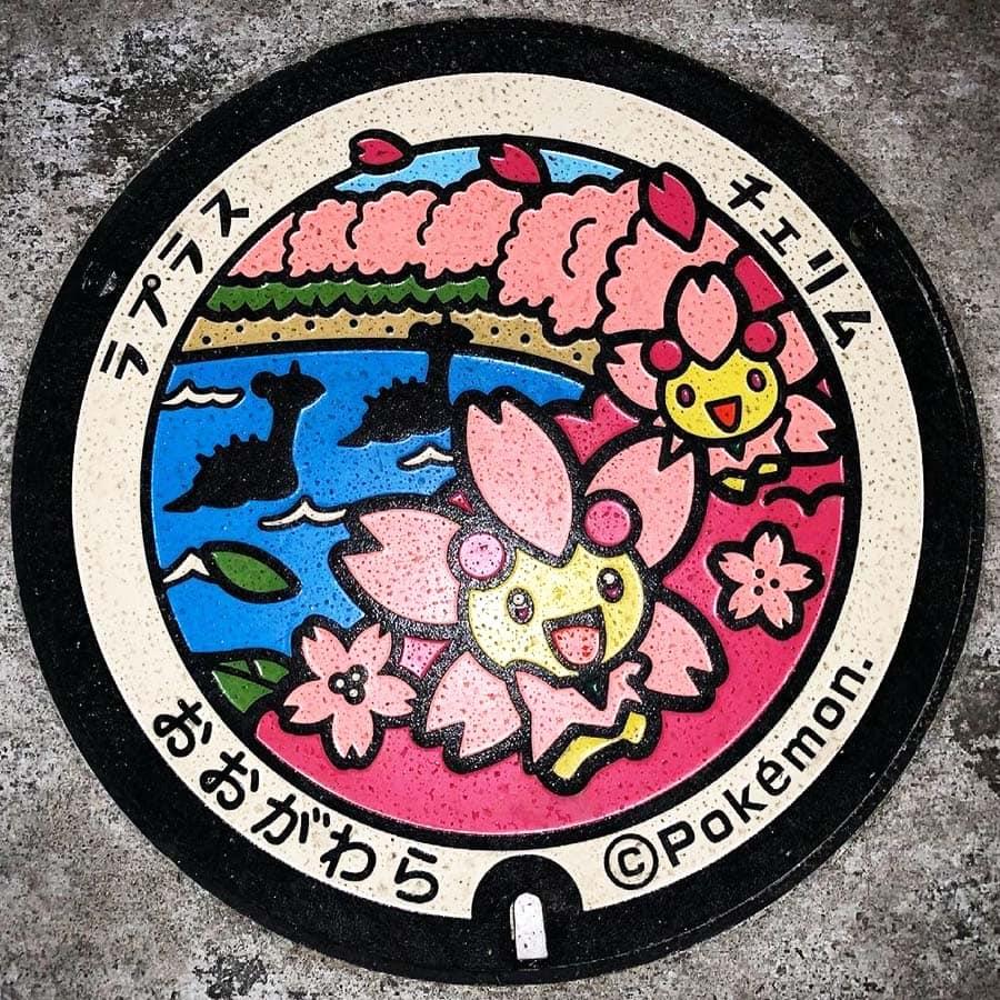 PokéPlak d'Ogawara figurant Lokhlass et Ceriflor