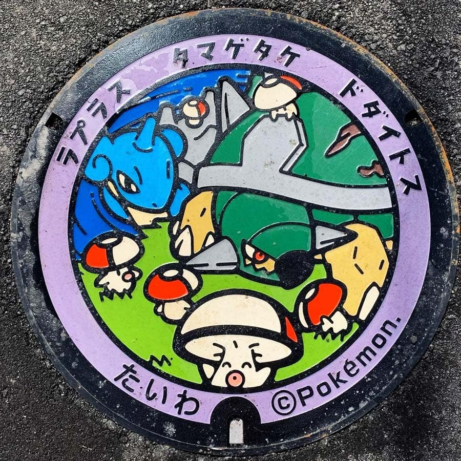 PokéPlak de Taiwa figurant Lokhlass, Torterra et Trompignon