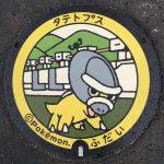 PokéPlak de Fudai figurant Dinoclier